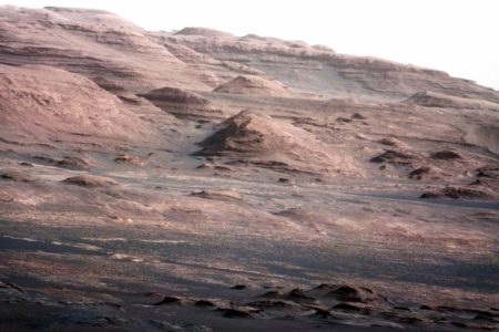 Claiming Evidence of bugs on Mars , University Deletes Press Releases