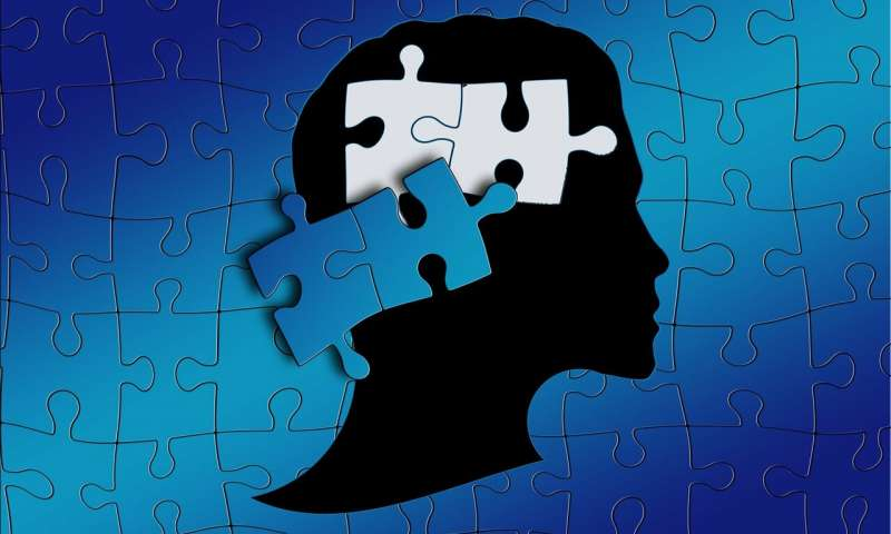 Scientists find why quality change prompts mental imbalance : 'A significant bit of the riddle'