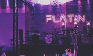 "If you are in Germany and planning to organise the event, then you must visit ""Platin EventLocation"""