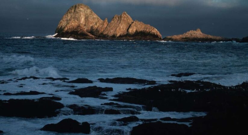 Disputable arrangement to airdrop poison onto the Farallon Islands to annihilate mice gets green light