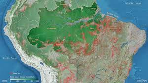 Amazon on the edge: Forest debasement driving carbon misfortune in the Brazilian rainforest
