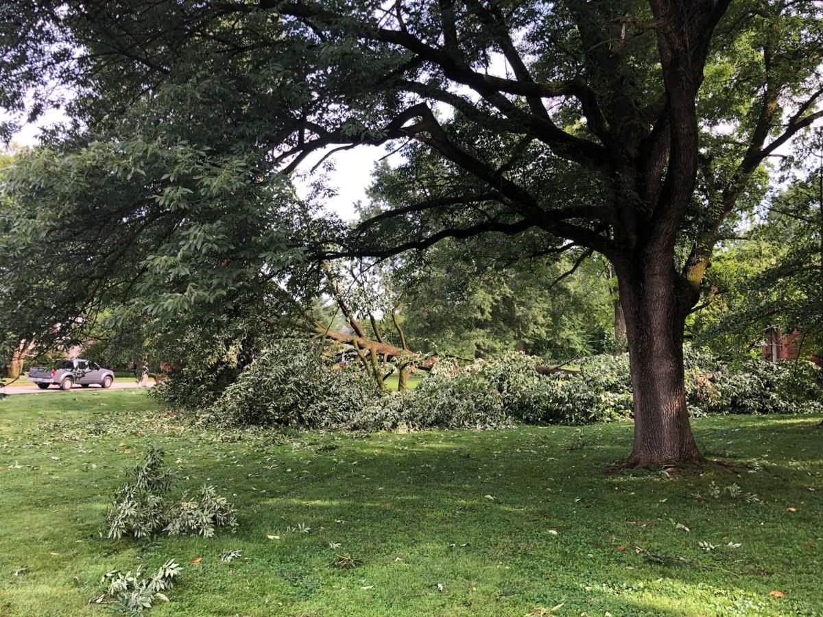 Cleanup proceeds across the St. Louis region following Thursday's tempests